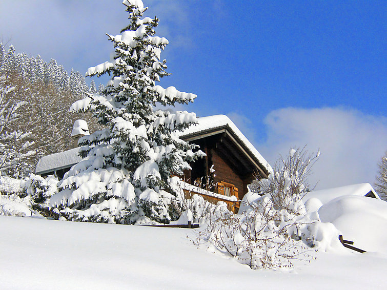Ubytování ve Švýcarsku, Moléson